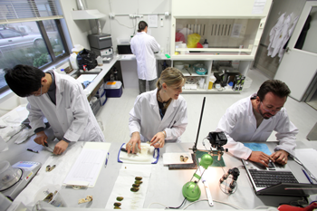 A photo from above of a laboratory. In the foreground 1 female and 2 male scientists in labcoats work at a bench. In the background another scientist in a labcoat has their back to the camera.